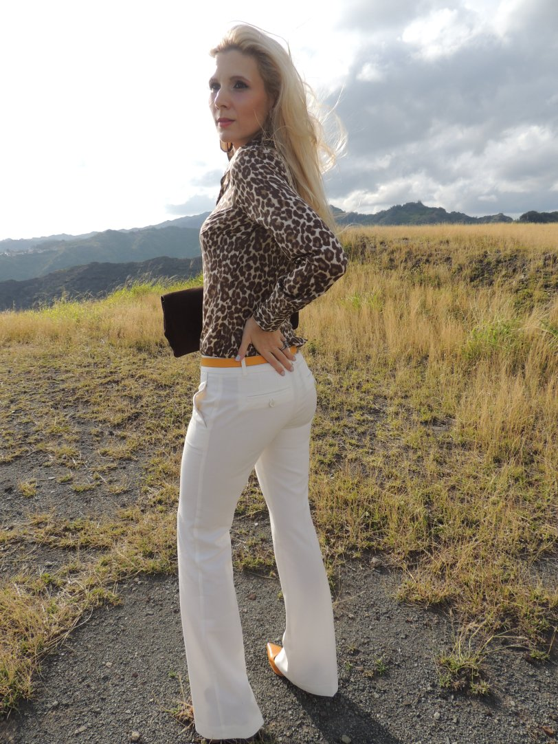 J.Crew Perfect Shirt Animal print, Victoria's secret Pants, Gucci Clutch, J.Crew Belt, Tory Butcrh Punps, Hermes Mais gator CDC, Gucci 18k Horsebit Bracelet, Slane & Slane Epona Ring, Agate Slice Earrings Dootlittle Jewelry M.A.C. Party Parrot Lipstick and Eyeshadow Duo in Reel Sexy